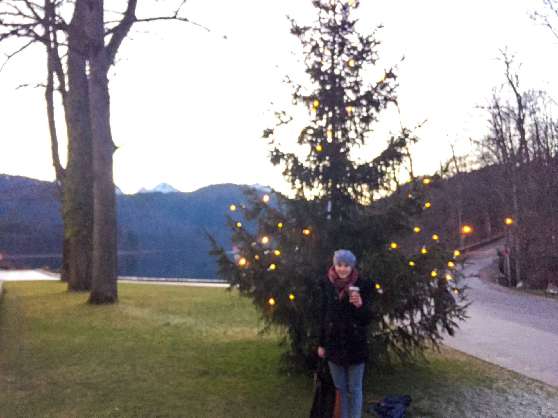 Sunset and a Christmas tree in Bavaria