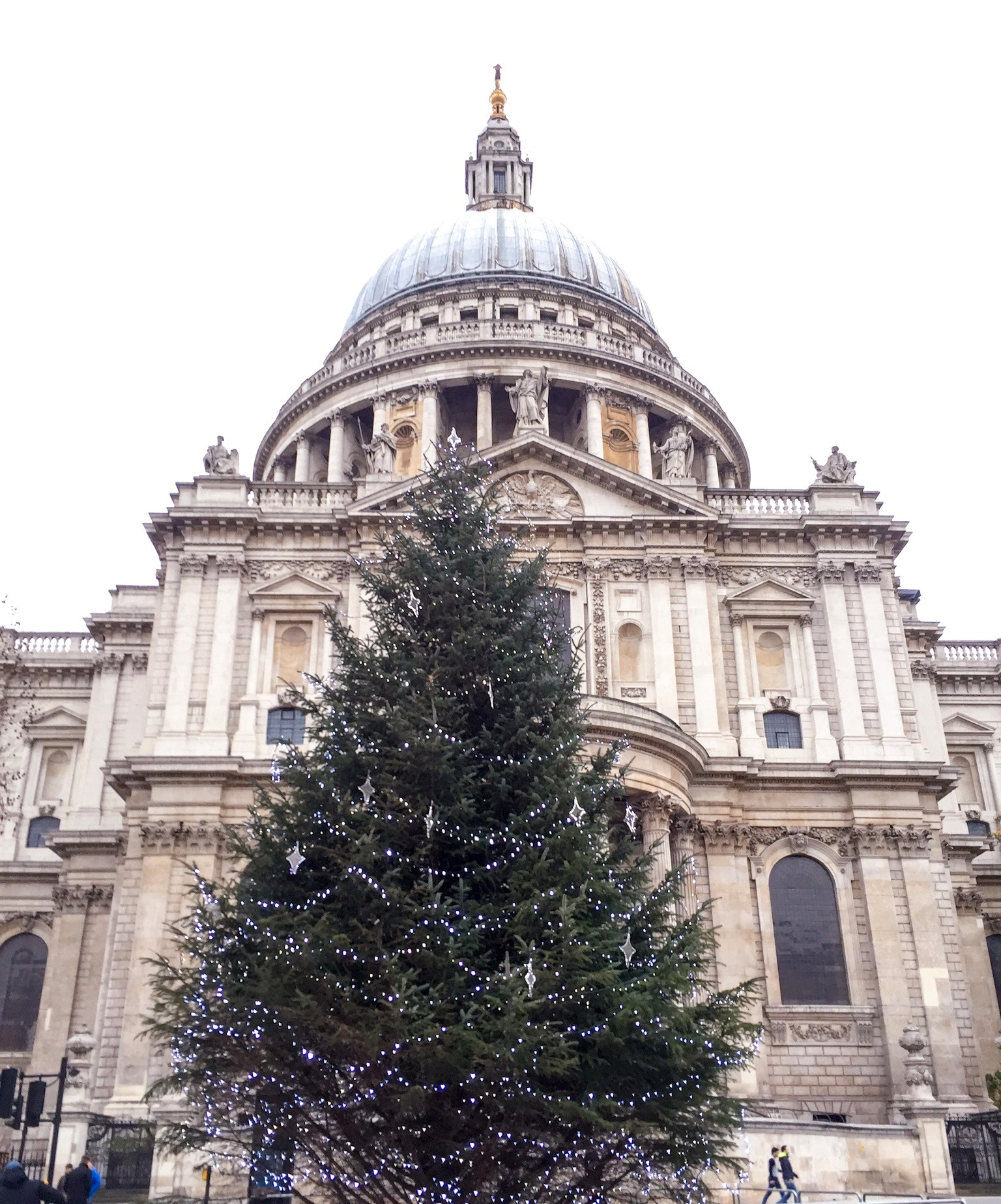 Christmas tree in front of St Pauls, London