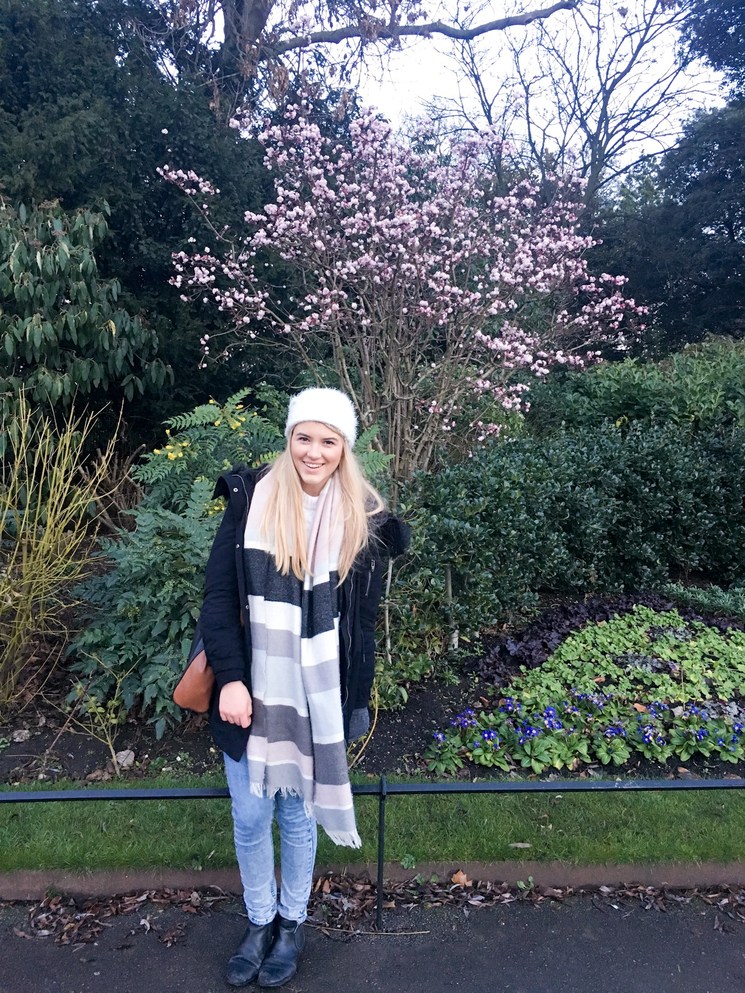 Winter flowers in Regents Park
