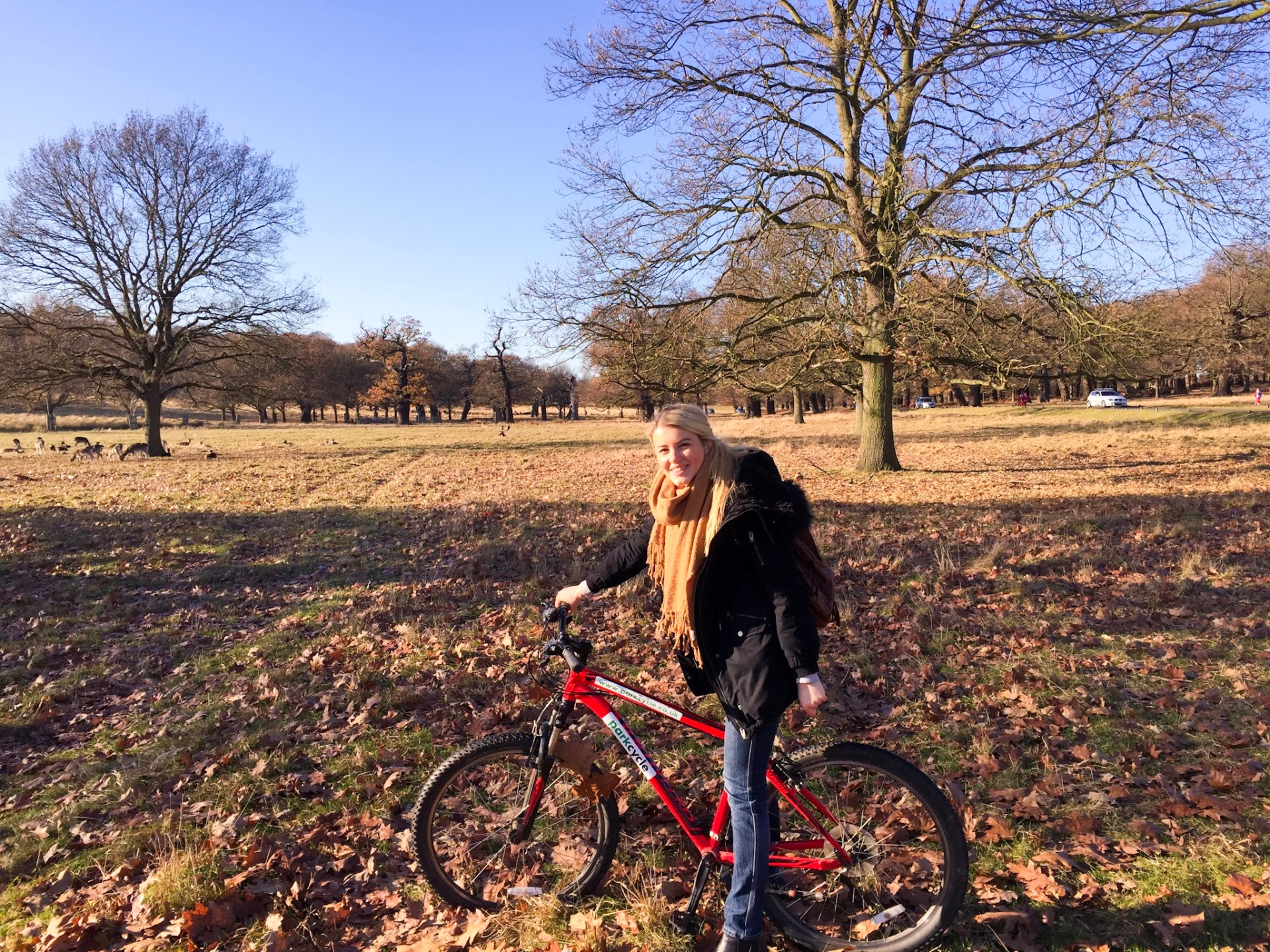 Cycling around Richmond Park, London