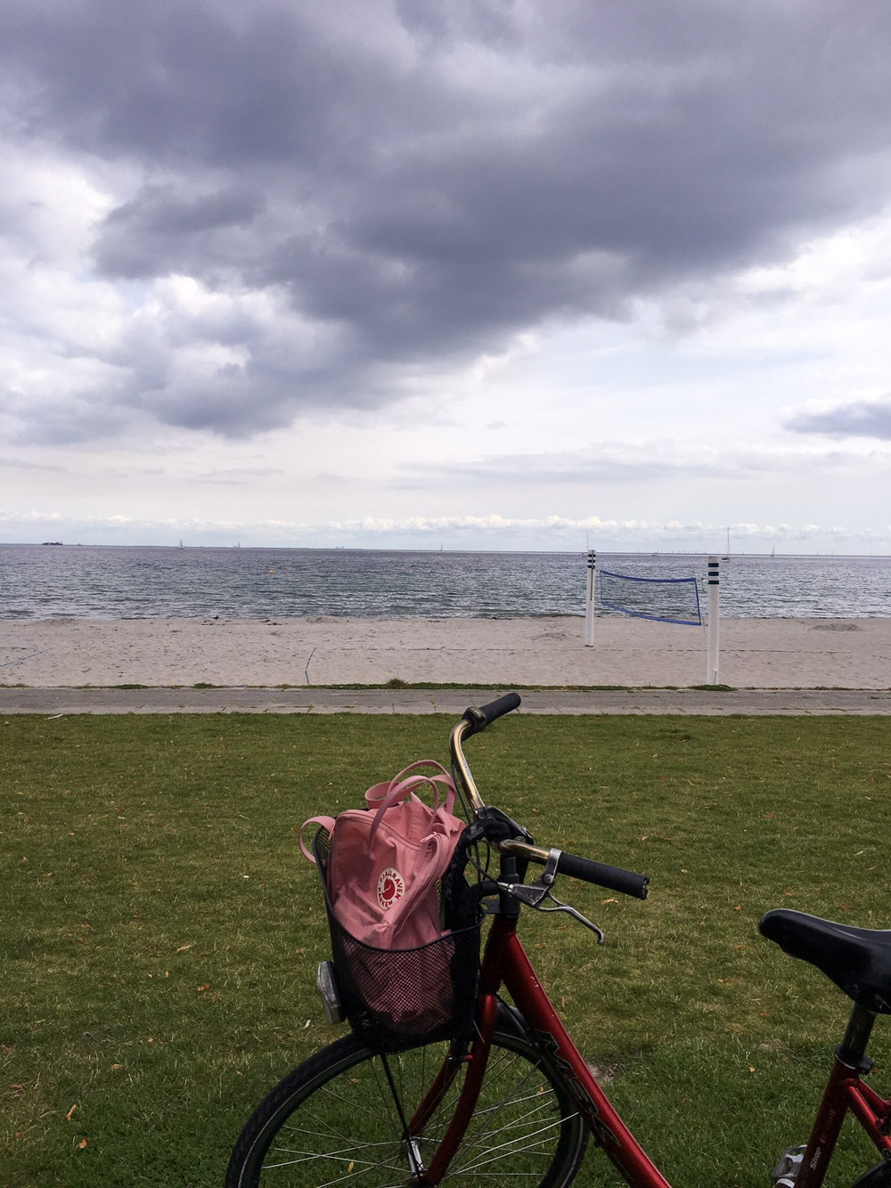 Cycling along the coast of Denmark