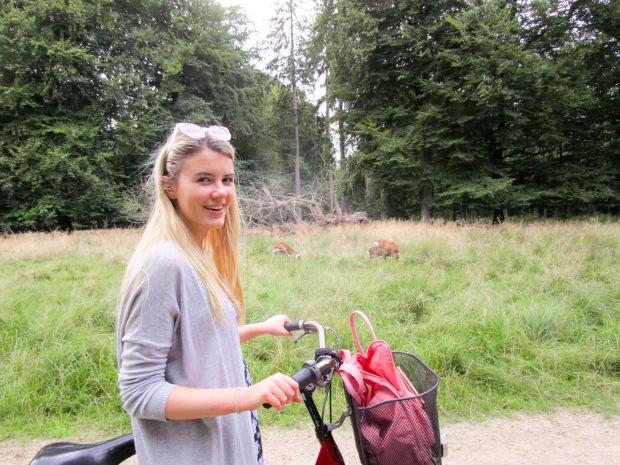 Cycling and spotting deer near Copenhagen, Denmark