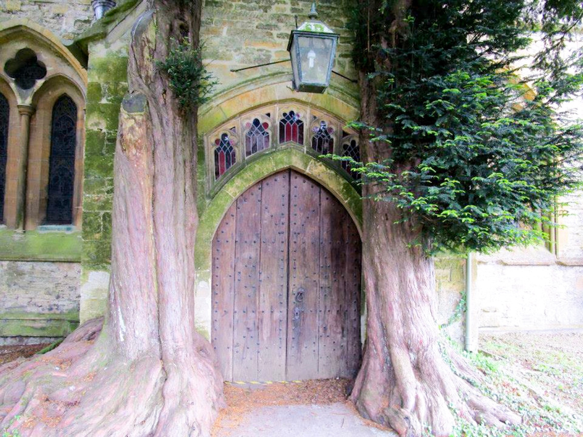 Trees in front of church door, Stow on the Wold