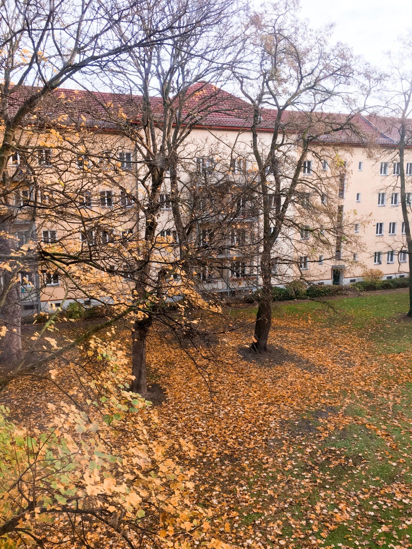 buildings in autumn in berlin