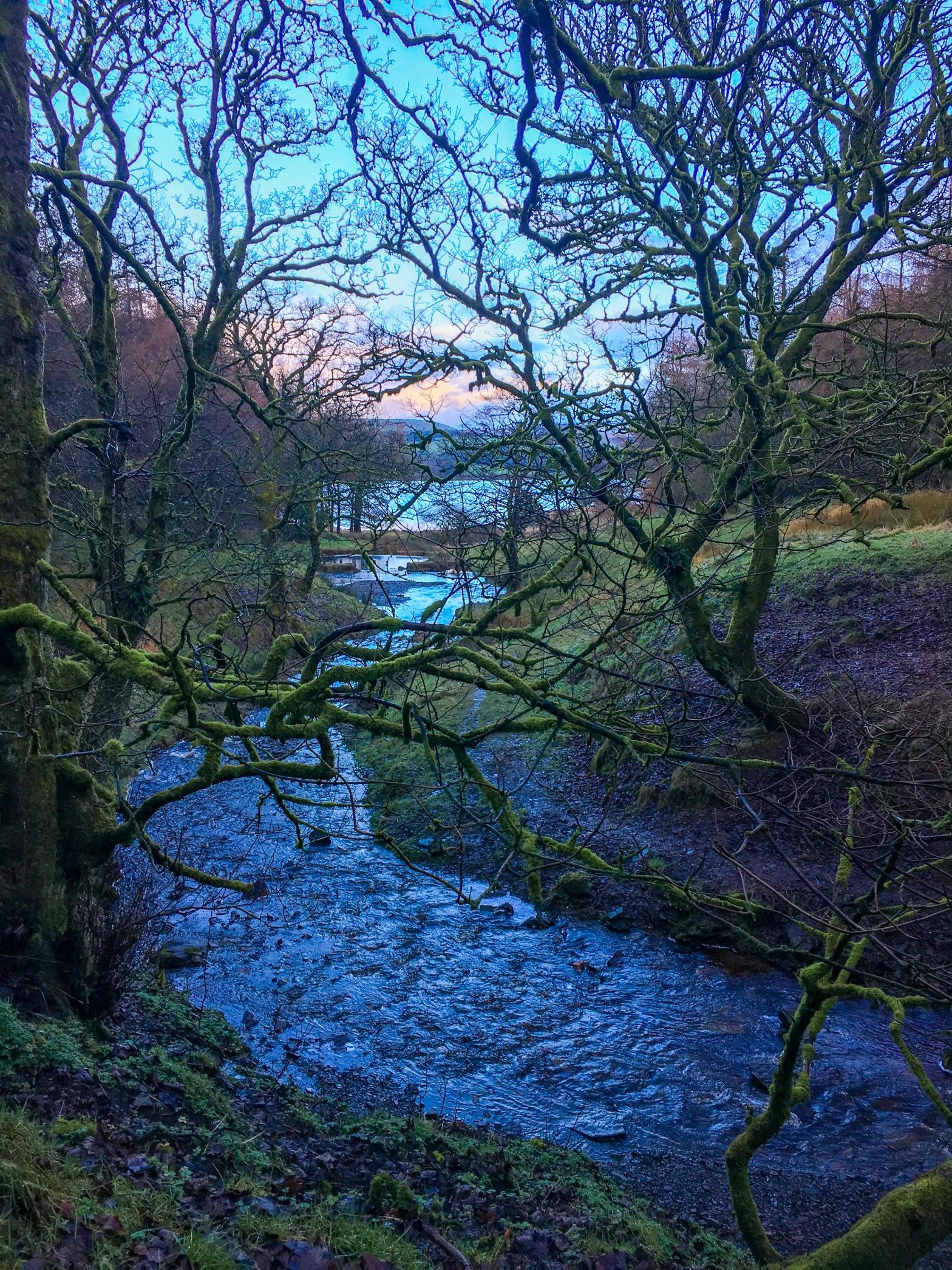 Picturesque fairy glen in Northern England
